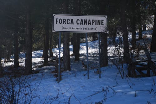 Forca Canapine
