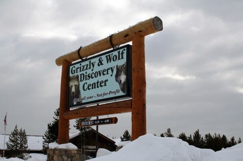 Parque Grizzly & Wolf Discovery Center