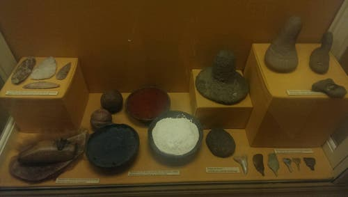 Museum of Anthropology and Natural Sciences